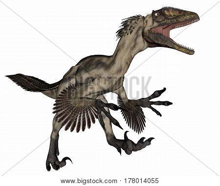 Deinocheirus dinosaur roaring isolated in white background - 3D render