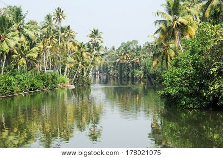 River On The Backwaters The Way From Kollam To Alleppey