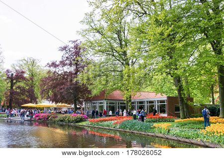 KEUKENHOF THE NETHERLANDS - MAY 10 2015: Blooming flowers with walking people in the background in Keukenhof park in Netherlands Europe
