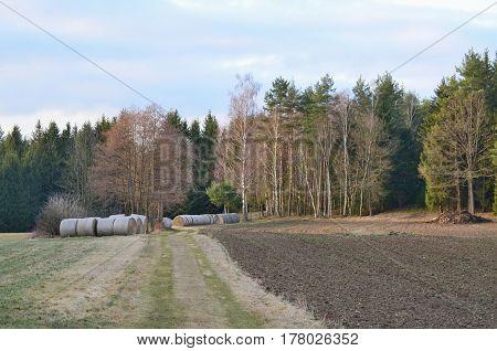view of haymaking hay storage Niederösterreich Austria