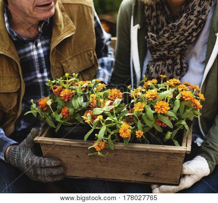 Senior adult couple holding flower pot together