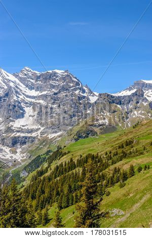 View of beautiful landscape in the Alps with fresh green meadows and snow-capped mountain tops in the background on a sunny day with blue sky and clouds in springtime.