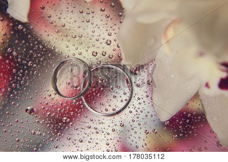 Beautiful composition of wedding rings and orchids on a glass table with water droplets