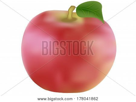 Red apples isolated on white backround closeup