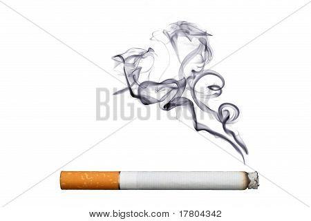 Object on white - cigarette