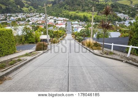 An image of the very steep Baldwin Road in Dunedin New Zealand