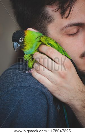 young man cuddle his pet parrot on shoulder  closeup indoor at home