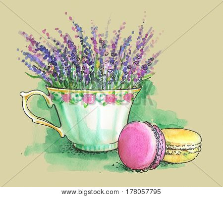 Painted watercolor french dessert macaroons and a cup with lavender bouquet.