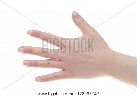 Female back hands isolated on white background