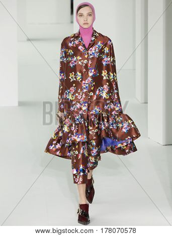Delpozo - Fall 2017 Collection