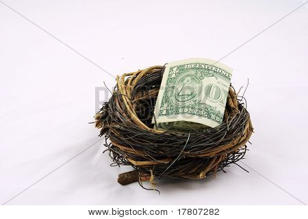 Us dollor in nest