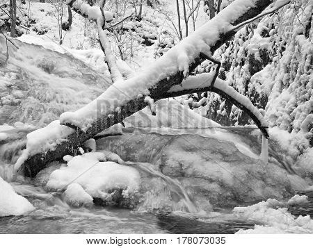 Frozen Cascade Of Waterfall, Icy Twigs And Icy Boulders In Frozen Foam Of Rapid Stream. Winter Creek