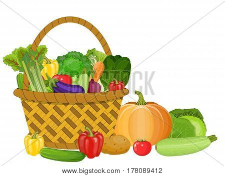 Basket with vegetables isolated on white. Fresh vegetable organic food set still life in basket. Fresh organic food, healthy eating