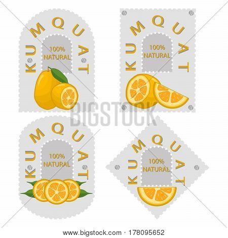 Vector illustration logo for whole ripe fruit kumquat green stem leaf cut half sliced cumquat background.