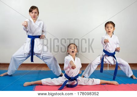 Three Little Girls Demonstrate Martial Arts Working Together