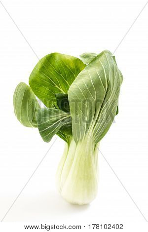 Fresh Green Baby Bok Choy, On White Background