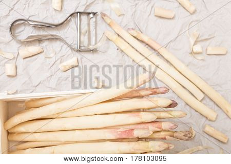 Bunch Of White Asparagus In Box, On Crumpled Paper With Metallic Peeler.