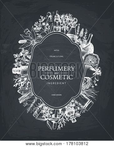 Vintage template. Ink hand drawn design with aromatic plants and fruits on chalkboard. Vector illustration with highly detailed perfumery and cosmetics ingredients sketch.