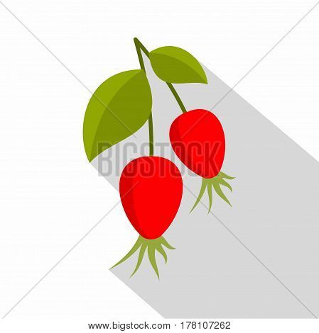 Ripe berries of a dogrose icon. Flat illustration of ripe berries of a dogrose vector icon for web isolated on white background