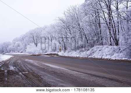 Asphalt Road Covered By Slush. Snowy Trees Along The Track.