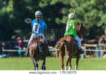 Polocrosse Horses Players Girls