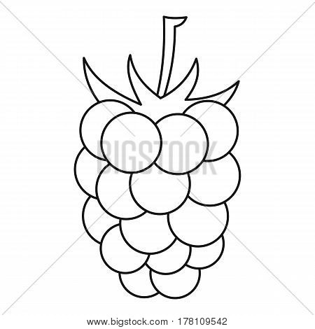 Blackberry icon. Outline illustration of blackberry vector icon for web