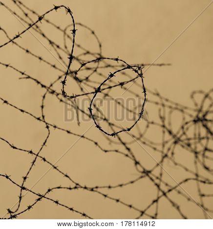 A shot of tangled metal barbed wire