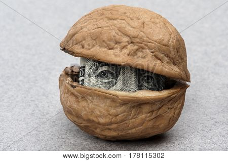 one hundred dollars inside a walnut, closeup gray backgrounded