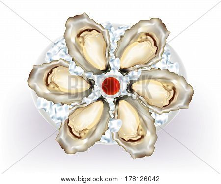 Oysters on a platter with ice cubes