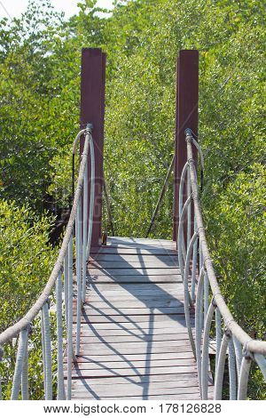 Rope bridge over mangrove forest Rope bridge in National Park Thailand