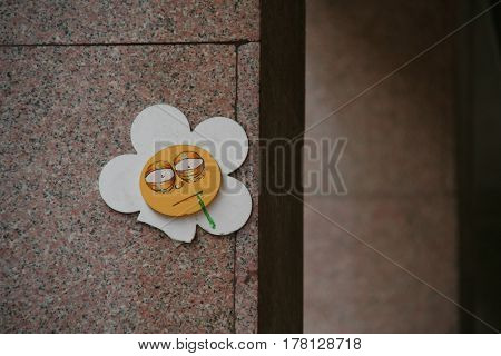 On wall chamomile vomited, so disguasting plant
