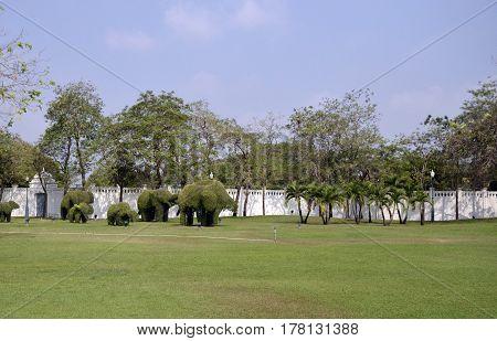garden in Bang Pa-In Summer Royal Residence Thailand Ayutthaya