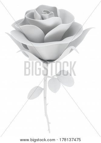 White rose object isolated 3d illustration vertical