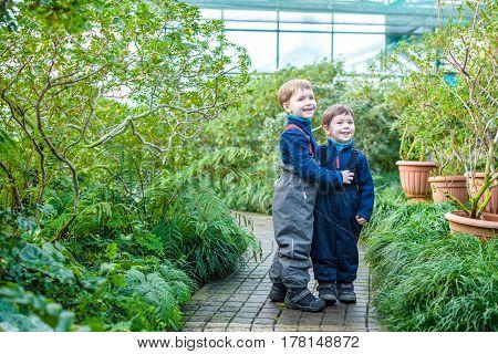 two boys brothers friends having fun in greenhouse. azalea winter garden. kids and family.