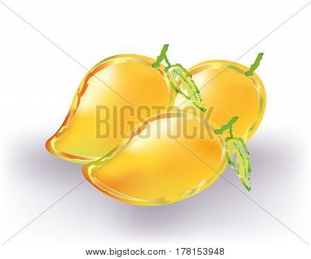 Yellow abstract mangoes  on white back ground