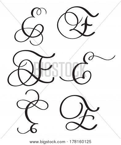set of art calligraphy letter E with flourish of vintage decorative whorls. Vector illustration EPS10.