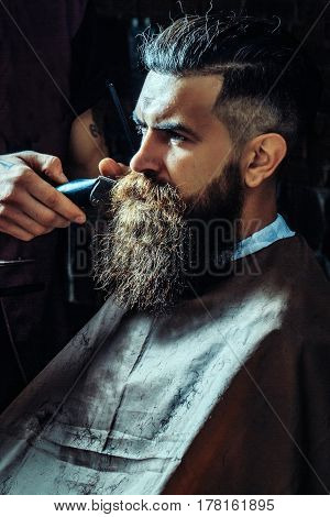 Bearded Man Getting Long Beard Haircut With Clipper