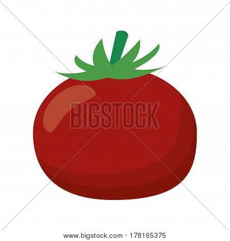 tomato vegetable healthy food vector illustration eps 10