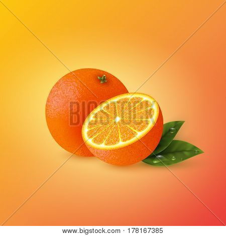 Realistic half cut and whole orange with leaves. Yellow-red background. Vector illustration.