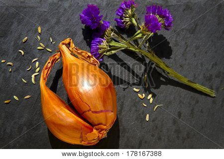 Close up of shallot bulb with fennel seeds and purple flower