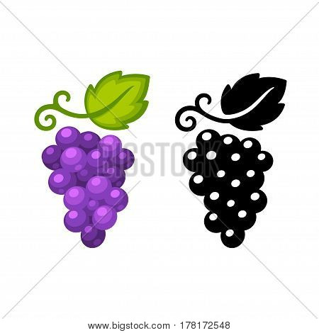 Grape vine vector icon in black and color. Simple and stylish wine logo illustration.