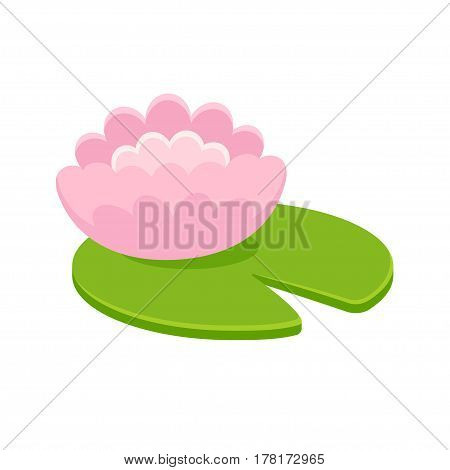 Pink water lily flower on green leaf isolated on white background. Stylized cartoon vector illustration.