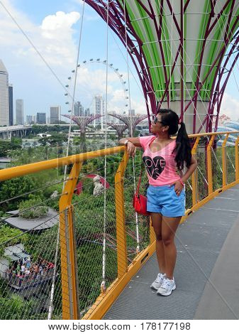 SINGAPORE ASIA - NOVEMBER 22: Supertree Grove Gardens by the Bay nature park November 22 2014 in Singapore Bay Marina Asia