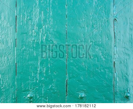 Grungy green painted wood plank wall background texture