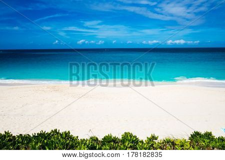 A really bright and abstract beach and ocean view in the Bahamas. New Providence, Nassau, Bahamas.