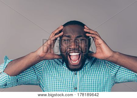 Portrait Of Furious Afroamerican Man In Rage Touching Head  And Screaming