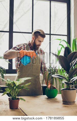 Vertical Portrait Of Gardener In Apron Using Spray For Cleaning Plants