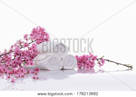 Branch pink cherry on three rolled towel ,salt in bowl isolated