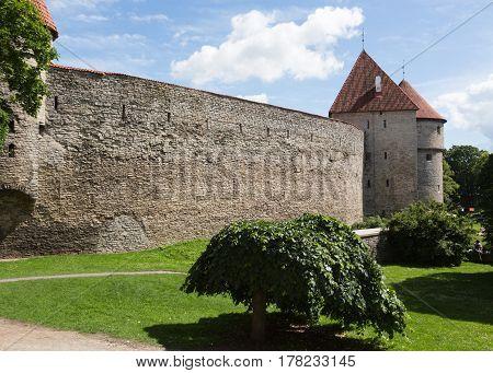 View of an ancient wall in Tallinn, Estonia