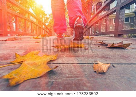 Person in blue sport Shoes and red casual Pants doing Morning Fitness on wooden Boardwalk covered by colorful autumnal dry Leaves in Downtown Park